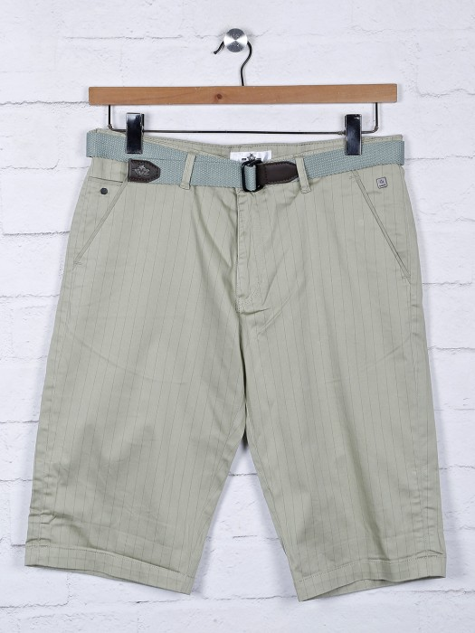TYZ Stripe Pista Green Cotton Shorts