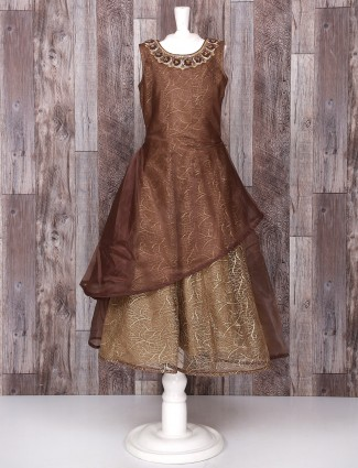 Brown color tissue silk gown
