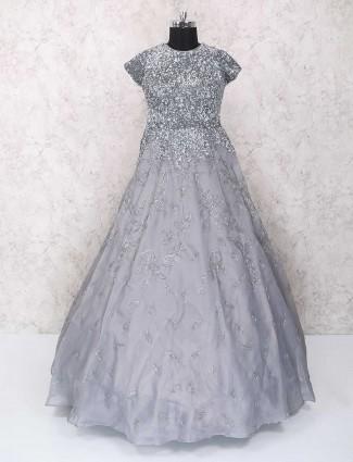 Grey Dessigner tissue silk gown