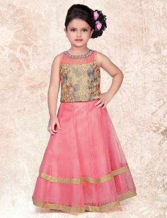 Pink net fabric choli suit