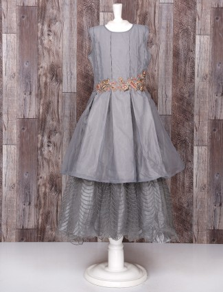 Tissue Silk grey color gown